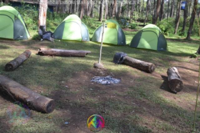 camping glamour eka surya group 30