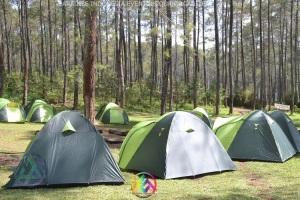 camping glamour eka surya group 31